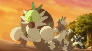 Ash and Passimian! A Touchdown of Friendship!!
