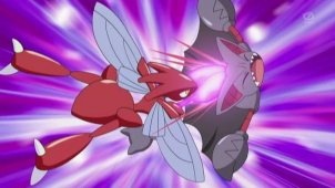 Air Battle Master Appears! Gliscor VS Scizor!