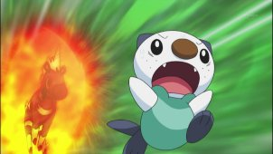 The Lost Shell! Oshawott's Biggest Crisis!