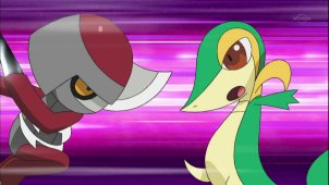 Fierce Fighting Don Battle! Snivy VS Pawniard!