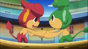 Cilan & Chili, The Brother's Battle! Pansear VS Pansage!!