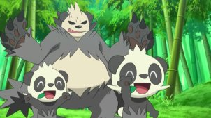 A Chase Through the Bamboo Grove! Pancham & Pangoro!!