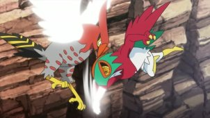 A Sky Battle?! Hawlucha VS Talonflame!!