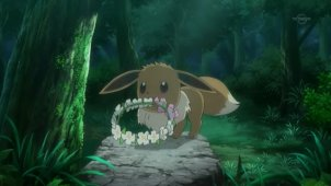 Eevee is Shy with Strangers! The Catcher in the Flowers!!