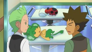 Cilan and Brock! Gyarados' Outrage!!
