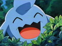 Episode 257: Wynaut! Wobbuffet and the Gym Badges