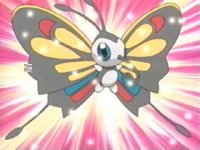 Episode 289: Contest! Beautifly's Magnificent Battle!