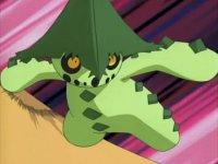 Image Result For Anime Islanda