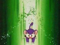 http://www.serebii.net/anime/characters/pics/rattata.jpg