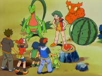 Episode 317: Treecko's New Technique!!  Watmel Field's Bullet Seed!