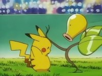 Jeanette Fisher's Bellsprout