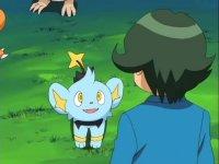 http://www.serebii.net/anime/pictures/shinou/478/DP307.jpg