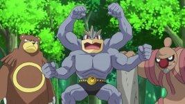 ursaring machamp conkeldurr the forest champion