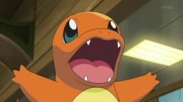charmander summer of discovery