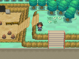 Pokemon Black 2 Pokemon White 2 The Dropped Item The first trader is located just west of driftveil city's pokemon center and he is looking for red shards. the dropped item
