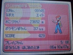 Pokémon Diamond/Pearl - Trainer Cards
