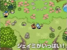Pok�mon Mystery Dungeon: Explorers of the Sky