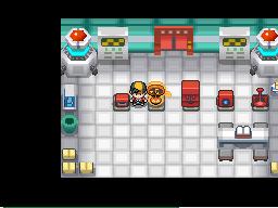 Pokémon Heart Gold & Soul Silver - Pokémon Forms