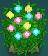 colorfulplant.png