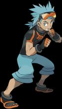 Pokemon Omega Ruby and Alpha Sapphire Brawly