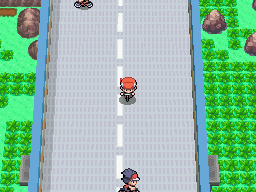 pokéarth sinnoh route 206