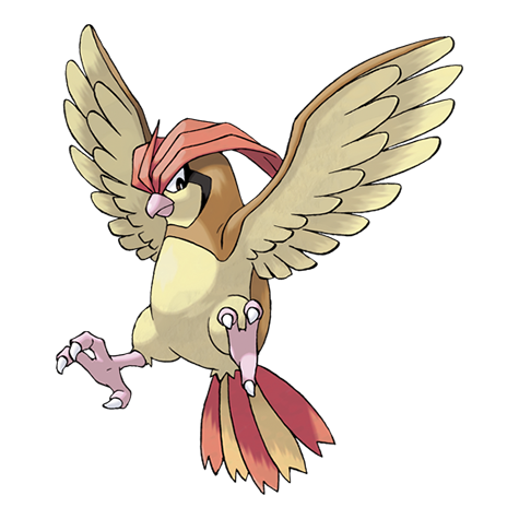 Pidgeotto Artwork