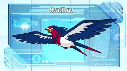 El Pokémon de la Semana 3: Swellow Swellow