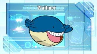 Pokémon of the Week - Wailord Wailmer Pokemon