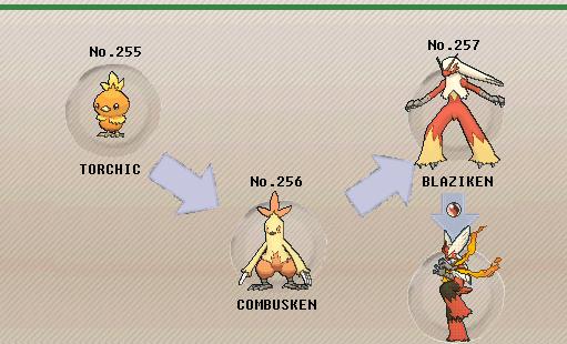 Pok mon of the week blaziken - Pokemon mega evolution blaziken ...