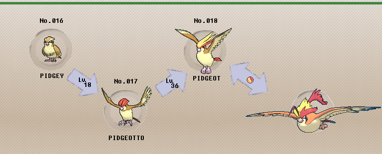 what level does numel evolve in pokemon omega ruby
