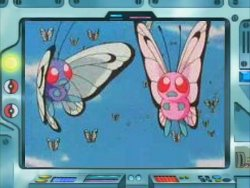 Pokemons SHINY ! ! ! Butterfree-Anime