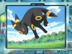 http://www.serebii.net/potw/Umbreon-Anime.jpg