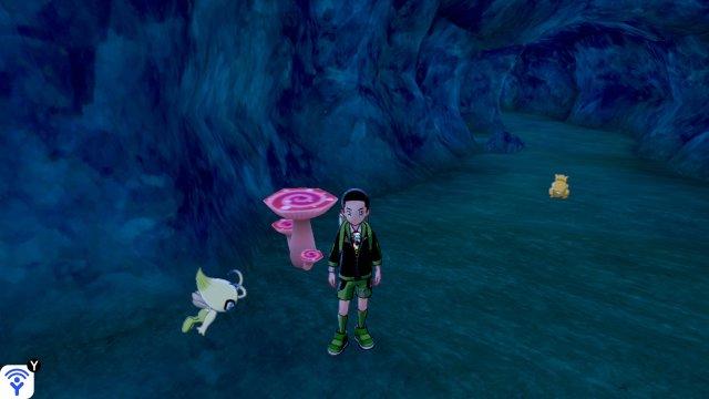 Pokémon Sword & Shield Isle of Armor - Max Soup