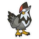 golbat + staraptor = LOOK! - Pokémon Diamond Forum ...